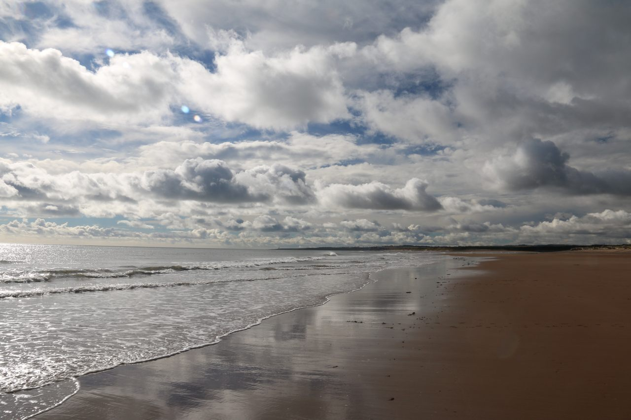 St Cyrus Beach And Nature Reserve